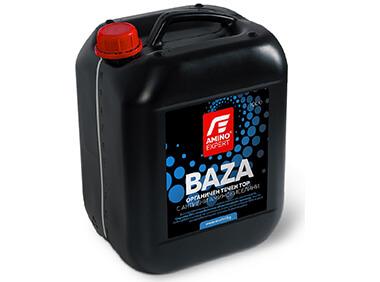 380x282-BAZA